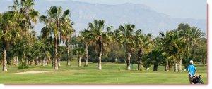 golf-.jpg