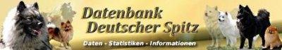 bannerdatabase.jpg