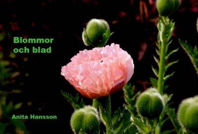 blommor-och-blad-1.jpg