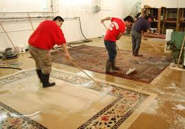 ثبت سفارش آنلاین دریافت خدمات قالیشویی و مبل شویی در تهران