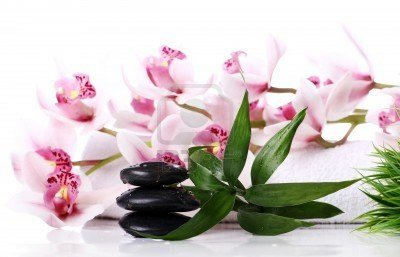 12769820-spa-stones-and-beautiful-orchid-over-white-background.jpg