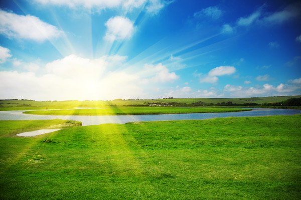 solen skiner över gröna fält. Bra miljö