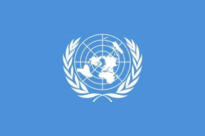 fn-flaggan.jpg