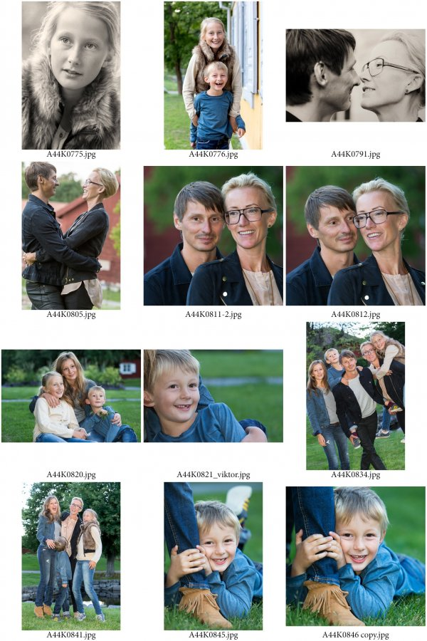 /familjen-hedlund-ark-2.jpg