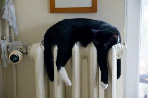 Alla blir glada av ett väl fungerande värmesystem.