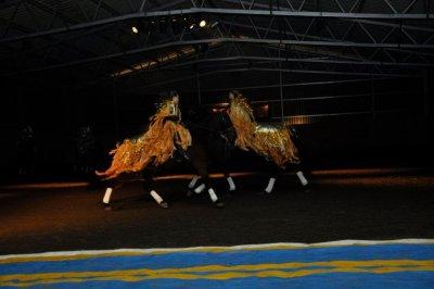 ljusshow-7-2011.jpg