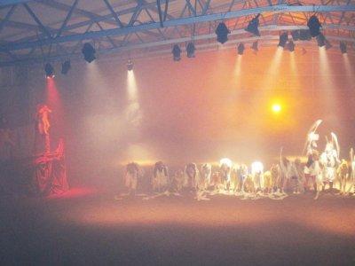 /ljusshow-2010.jpg