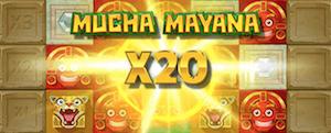 Mucho Mayana funktion