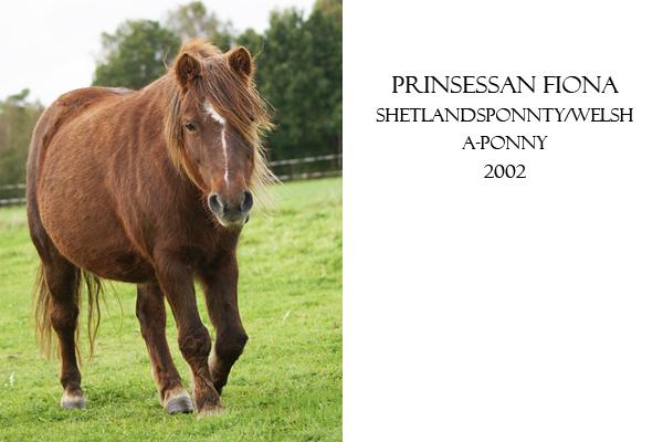 prinsessan-fiona.jpg