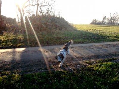 2011-11-12-142026.jpg