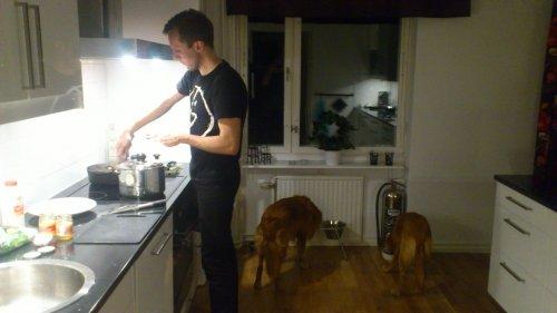 Andreas lagar mat