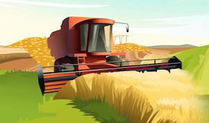 Insta Harvest