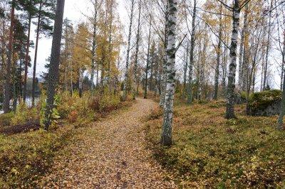 /var-fina-promenad-vag-i-oktober.jpg