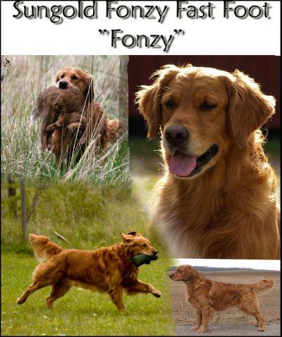 fonzy.jpg