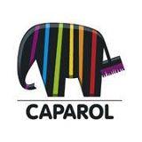 caparol-farg.jpg