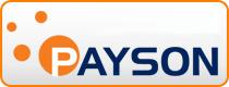 Hemsida Premium med Payson