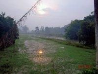 tidig-morgon-lotus.jpg