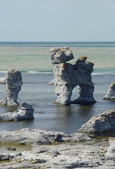 Kalksten är vanligt på Gotland