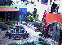 House of the Flowers - Vacation Rental in San Miguel de Allende