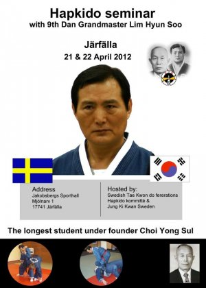 hapkido-seminar-sweden-2012.jpg