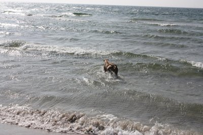 stranden-m-alla-026.jpg
