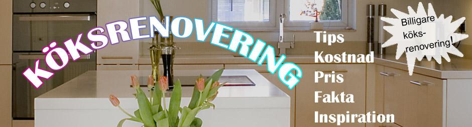Bygga kök, tips och kostnader  Köksrenovering - pris, tips och ...