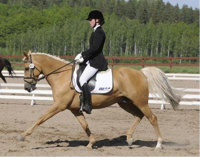 Alexzandra & Golden Dream 2007
