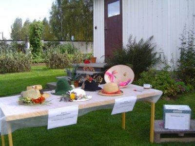 skordefest-hildasholm-hattavling-2012.jpg