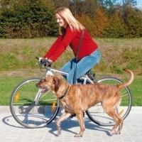 Trixie Pyöräilytalutin