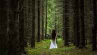 Skogen blev mitt andra hem – Del 2 När jag kom upp i tonåren så fortsatte mitt liv där ute i det fria och de djupa skogarna. Mopeden tog mig […]