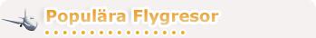 Populära Flygresor