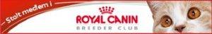 royalcanine1.jpg