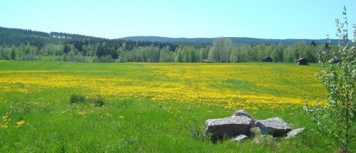 uitzicht-voorjaar.jpg