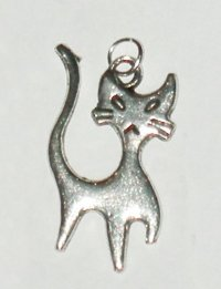 silver-katt.jpg
