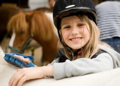 istock-16934558xsmall-pony.jpg