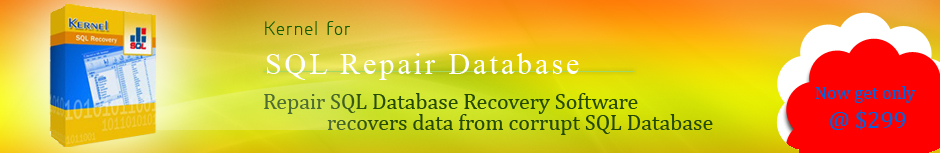 Export data from recovery database exchange 2010