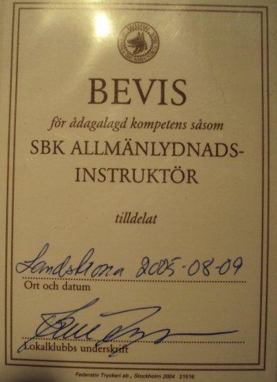 sbk-allmanlydnadsinstruktor.jpg