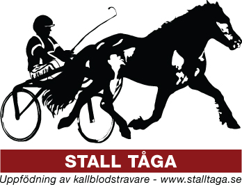 /logotyp.jpg