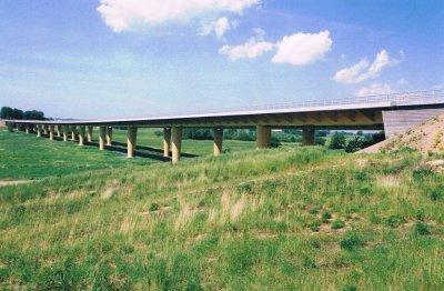 tranarps-bro.jpg