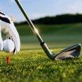mini-golf-4.jpg