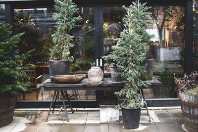 Julmarknad på Zetas trädgård! | Systrarna och jag