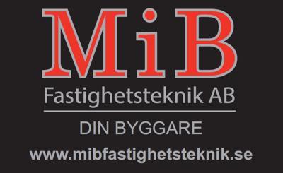 takläggare Halmstad logga