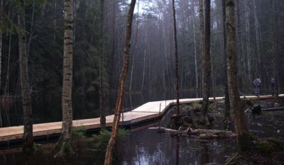 badbryggor i form av gångbro i naturområde