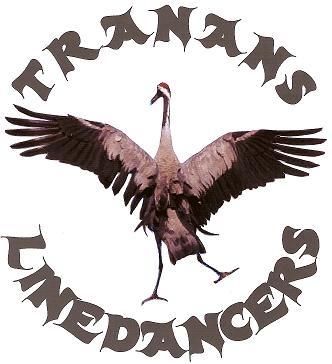 tranans-linedancers1.jpg