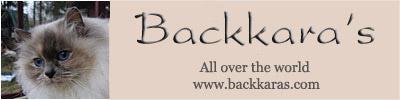 /banner_backkaras4.jpg
