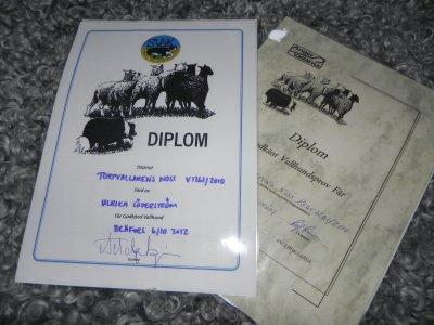diplom-gkvallh-003.jpg