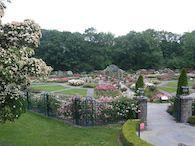 New Yorks botaniska trädgård