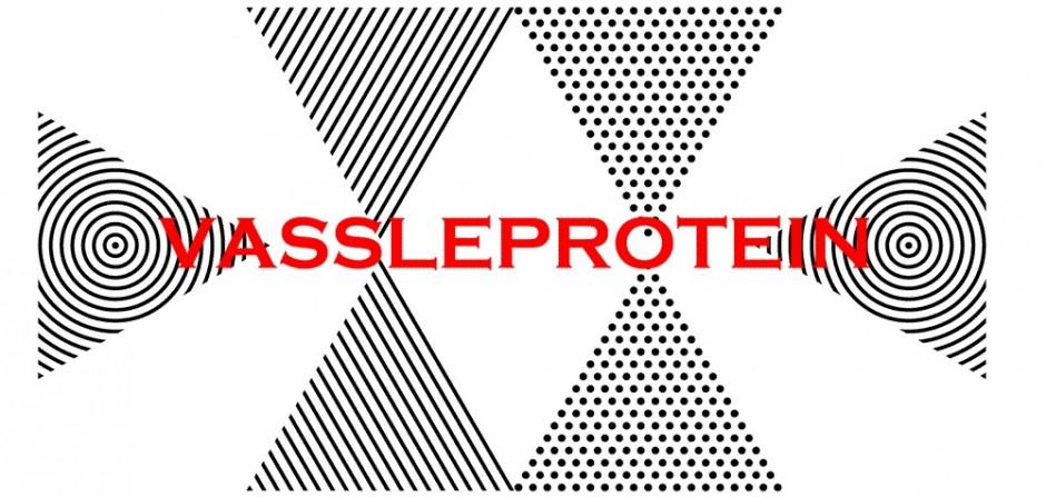 Vassleproteinpulver