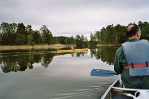 2005-029-paddling.jpg