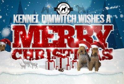 kennel-dimwitch-jul-2012.jpg